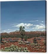 Sedona Cactus Az Canvas Print