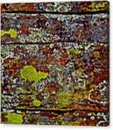 Sedona Carpet Canvas Print