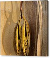 Seeds In Warm Coat Canvas Print
