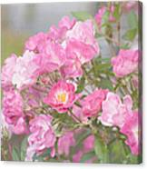 Seek Beauty Canvas Print