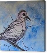 Segno Canvas Print