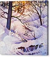 Seldovia Ravine Canvas Print