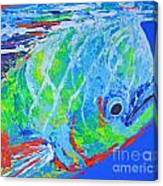 semi abstract Mahi mahi Canvas Print