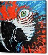 Semiabstract Parrot Canvas Print