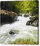 Semuch Champey Waterfalls Canvas Print