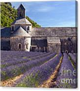 Senanque Abbey Canvas Print