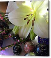 Send The Light Lily With Marbles Canvas Print