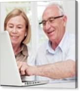 Senior Couple Using Laptop Canvas Print