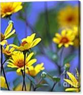 Sensational Summer Canvas Print
