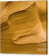 Sensual Sand Canvas Print