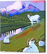 Sentinel Denali Canvas Print