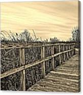 Sepia Boardwalk Canvas Print