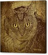 Sepia Cat Canvas Print