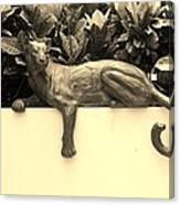 Sepia Cat Canvas Print