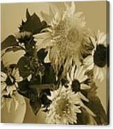 Sepia Garden Sunflower Bouquet Canvas Print