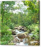 September Arrives At The Unami Creek Canvas Print
