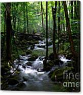 Serene Greenbrier Area Stream  Canvas Print
