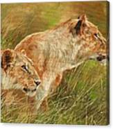 Serengeti Sisters Canvas Print