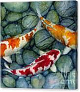 Serenity Koi Canvas Print