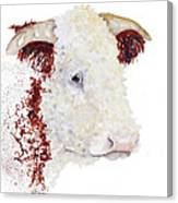 Sergeant Major Is A Hereford Bull Canvas Print
