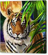 Second In The Big Cat Series - Tiger Canvas Print