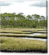 Serpentine Waters Canvas Print
