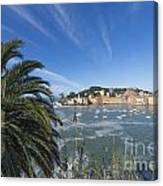 Sestri Levante With Palm Tree Canvas Print