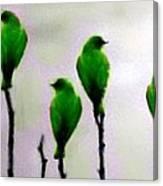 Seven Birds Of Green Canvas Print