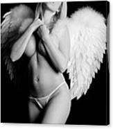 Sexy Angel  Canvas Print