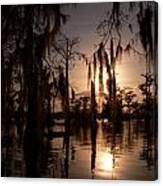 Shade On The Bayou Canvas Print