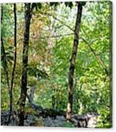 Shade Upon A Rock Canvas Print