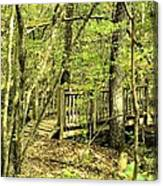 Shades Mountain Bridge In The Forest Canvas Print