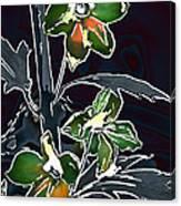 Shades Of Green And Gray Canvas Print