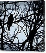 Shadow Among The Shadows Canvas Print