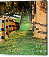 Shadow Fencing Canvas Print
