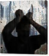 Shadow Of A Man Canvas Print