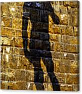 Shadow Of Michaelangelo's David Canvas Print