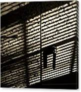 Shadow Patterns Canvas Print