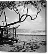 Shadow Tree Cas En Bas Canvas Print
