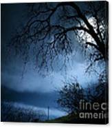 Shadowlands 3 Canvas Print
