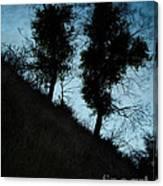 Shadowlands 8 Canvas Print