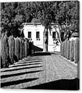 Shadows At Clos Pegase Winery Canvas Print
