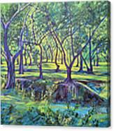 Shadows At Noon - Indian Landscapes Canvas Print