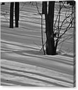 Shadows In Boyertown Park Canvas Print
