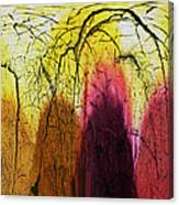 Shadows In The Grove Canvas Print