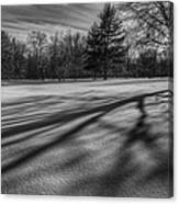 Shadows In The Park Canvas Print