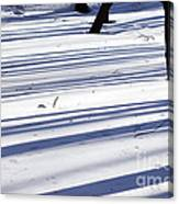 Shadows Lines On Snow In Park Canvas Print