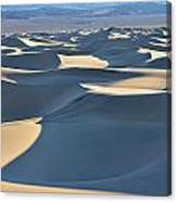 Shadows Over The Dunes Canvas Print