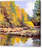 Shadowy Creek Canvas Print