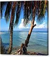 Shady Palm Beach Canvas Print
